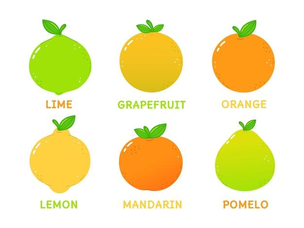 面白いかわいい柑橘系のキャラクターのバンドルセット