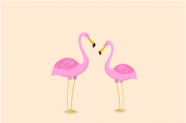 Funny cute flamingo meet each other