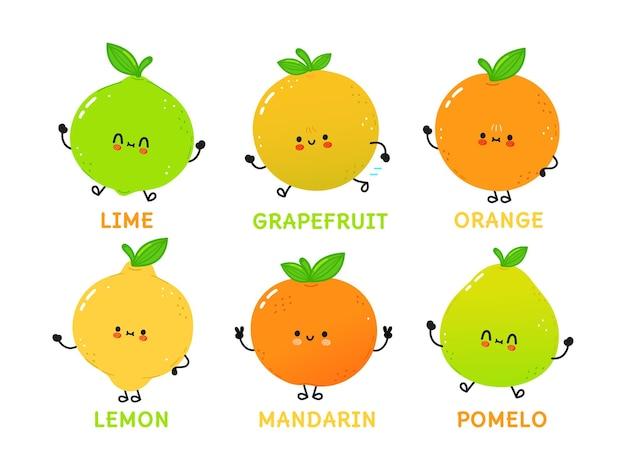 面白いかわいい幸せな柑橘系のキャラクターバンドルセット