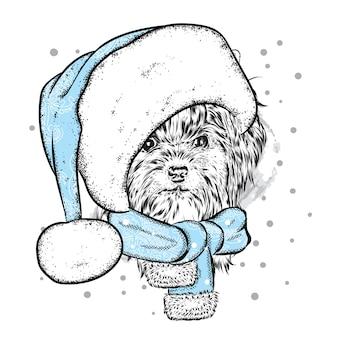 Смешная собака в рождественской шапке и шарфе.