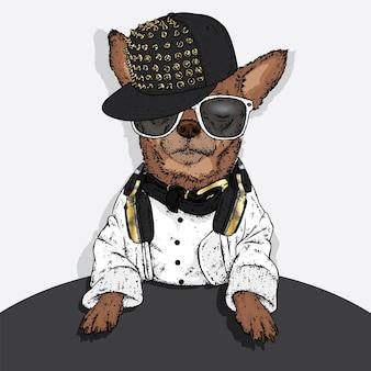 スタイリッシュなキャップとメガネで面白い犬