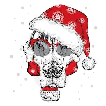 サンタの帽子、メガネ、スカーフの面白い犬。クリスマス。