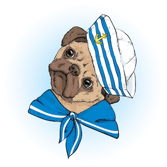 スタイリッシュな服を着た面白い犬