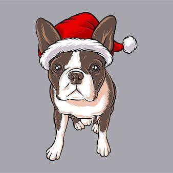 Забавный щенок собаки в рождественском костюме санта клауса