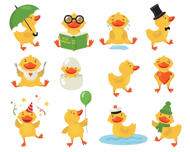 Funny duckling set