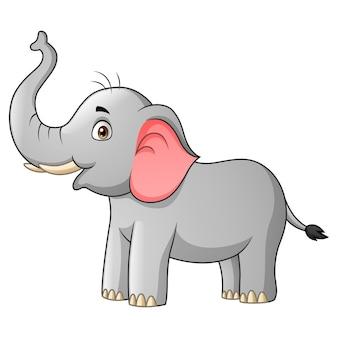 Funny elephant cartoon   illustration
