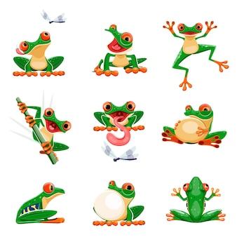 Смешные лягушки в разных позах