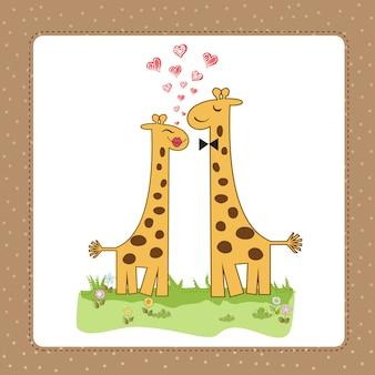 Смешная пара жирафов в любви
