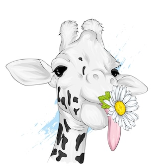 Funny giraffe with chamomile.