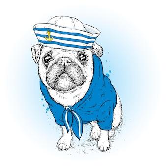 船乗りの帽子をかぶった面白い流行に敏感な犬