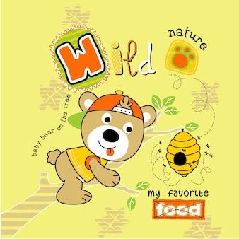 Funny honey bear