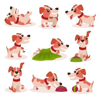 面白いジャックラッセルテリアのキャラクターセット、さまざまなポーズや状況のイラストでかわいい犬