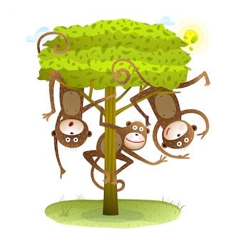野生の自然の中で木の動物漫画の面白いサルの友達