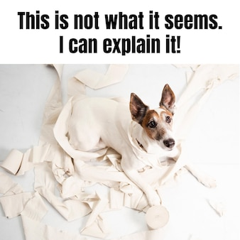 面白い厄介な犬の動物のミーム