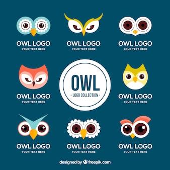 Funny owl logo set