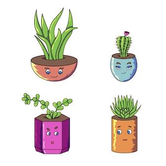 재미있는 식물 귀여운 얼굴 냄비