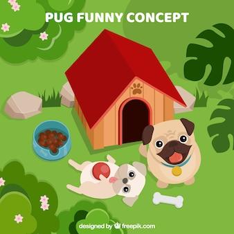 Смешные мопсы, играющие в саду