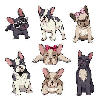 Funny puppies of french bulldog