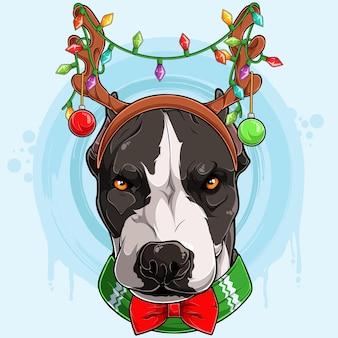 Забавная серьезная рождественская голова питбуля в оленьих рогах с огнями рождественский питбуль