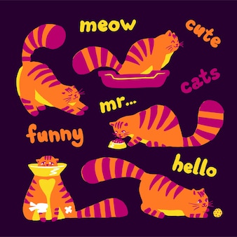 Funny shy cats, set of illustrations color characters isolated on a white background. flat hand drawn cartoon