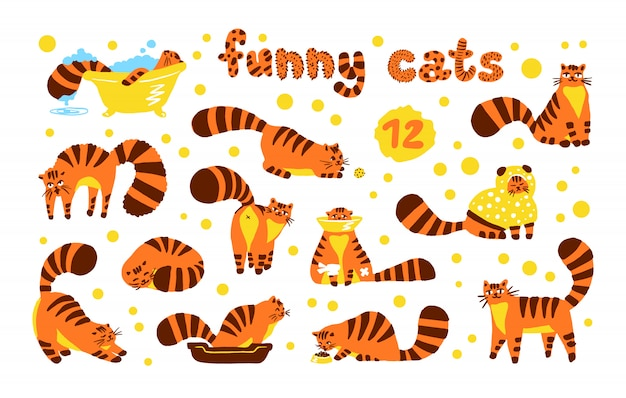 Funny shy cats, set of illustrations color orange characters isolated. flat hand drawn cartoon style cute kitten collection