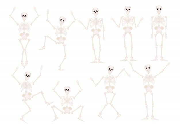 Funny hand drawn human skeletons Vector | Free Download