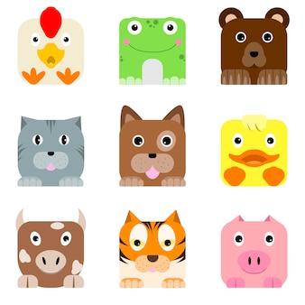 Funny square animals