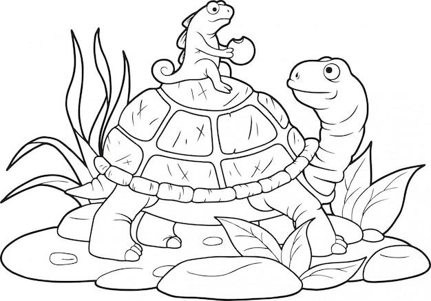 재미있는 거북이