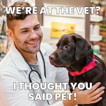 Meme divertente animale spaventato dal veterinario