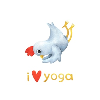 Funny white chicken in yoga poses.  illustration with a bird in shalabhasana pose