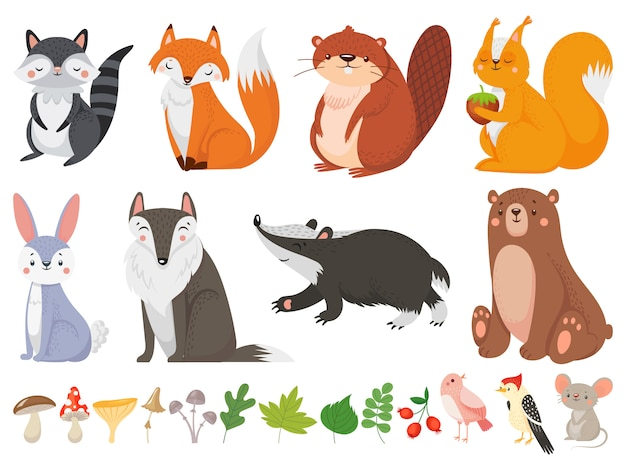 Funny wood animals. wild forest animal, happy woodland fox and cute squirrel cartoon illustration set