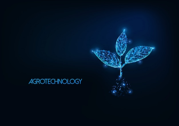 Futuristic agrotechnology illustratation with glowing polygonal plant sprout