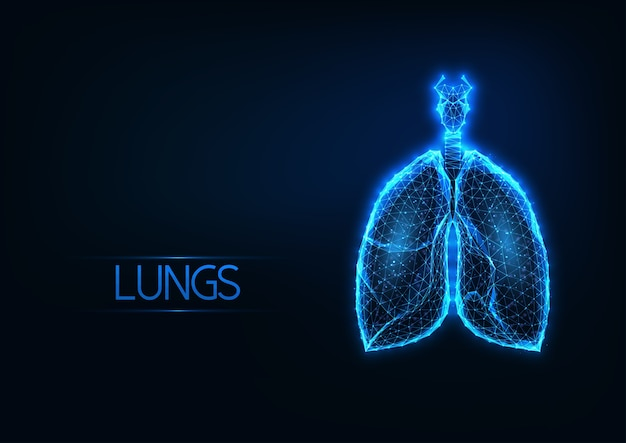 暗い青色の背景に未来的な輝く低ポリゴンの解剖学的肺ホログラム。医療診断技術。モダンなワイヤーフレームメッシュデザイン