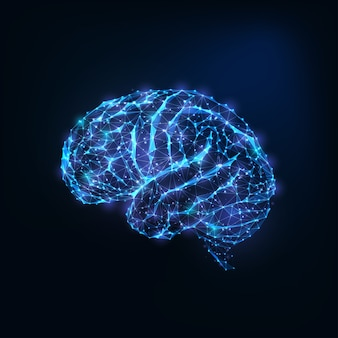Futuristic glowing low polygonal brain as connected lines, stars isolated on dark blue background.