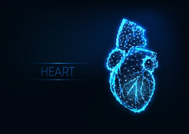 Futuristic glowing low polygonal human heart isolated