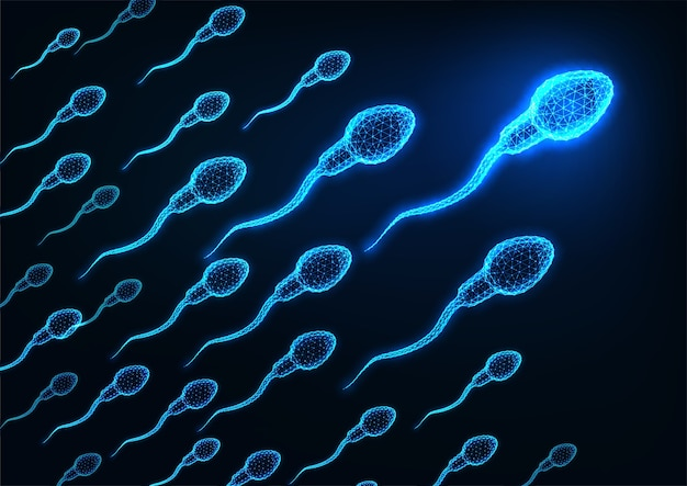 진한 파란색 배경에 미래의 빛나는 낮은 다각형 인간의 정자 세포. 프리미엄 벡터