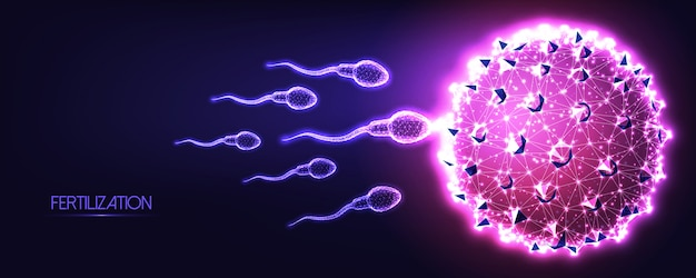 Futuristic natural fertilization concept with glowing low polygonal human sperm and egg cells on dark blue to purple background.
