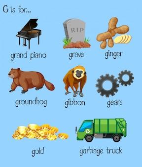 アルファベットgの多くの単語