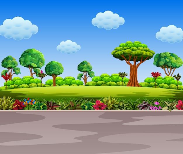 Сад рядом с дорогой