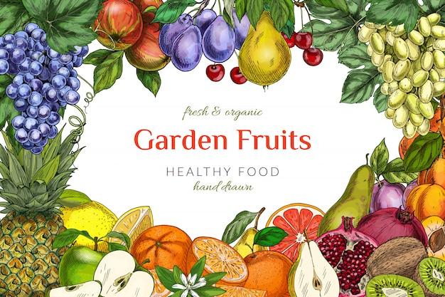 Garden fruits frame template