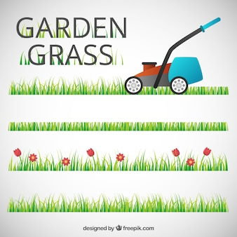 Garden grass with a lawn mower
