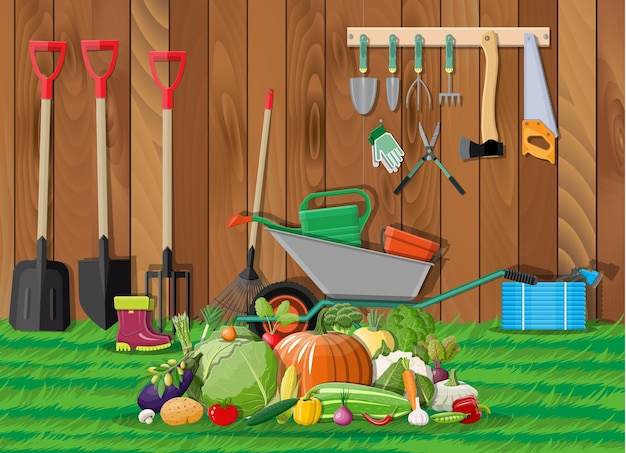 Garden harvest with vegetables and different gardening equipment