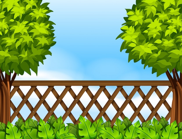 Garden scene with fence and trees