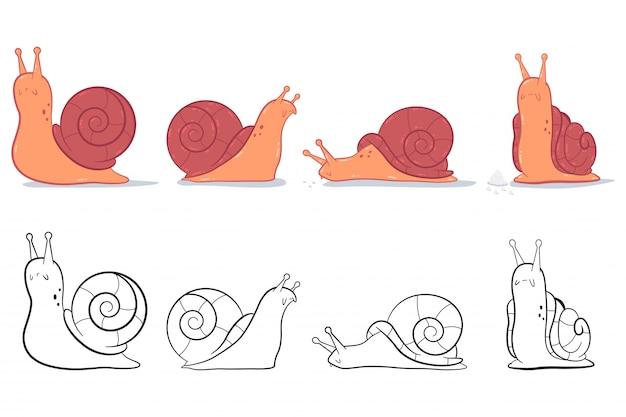 Garden snail   cartoon set isolated on a white background.