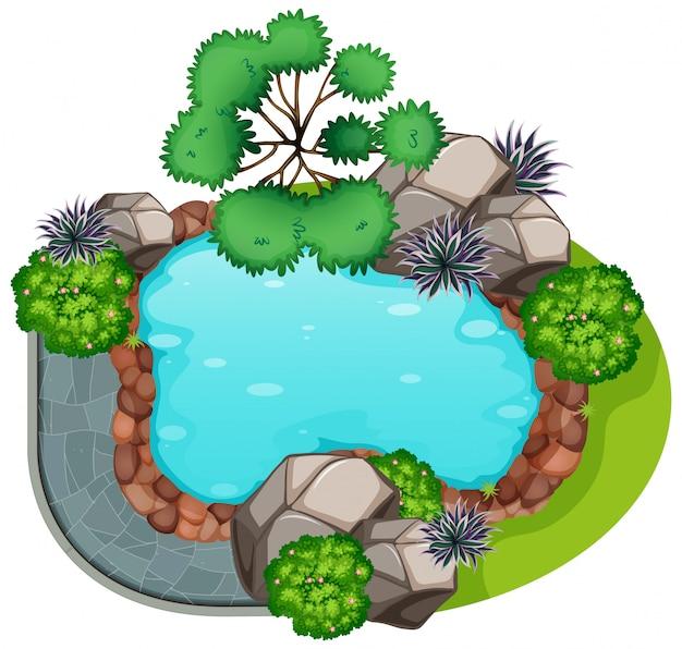 A garden top view