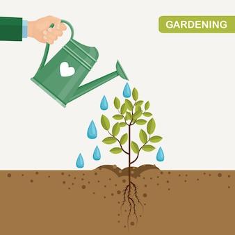 Садовая вода может поливать растения, саженцы