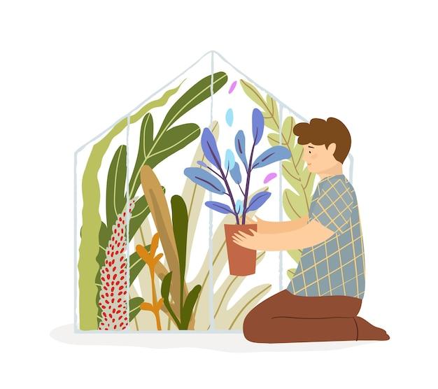 彼の植物をチェックする庭師