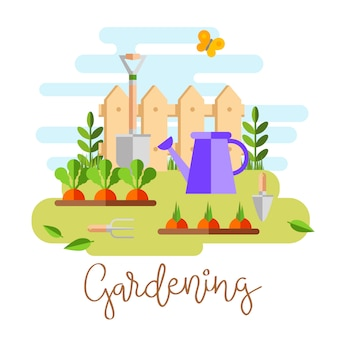 Gardening and horticulture, hobby tools, vegetables crate and plants.