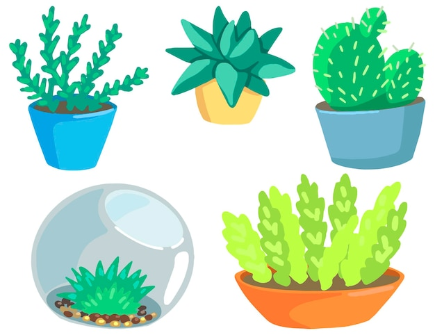 Gardening, cacti, houseplants, succulents. collection of hand drawn vector illustrations. colorful cartoon cliparts isolated on white background. elements for design, print, decor, postcard, stickers.