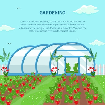 Садоводство, сельское хозяйство шаблон баннеров социальных медиа